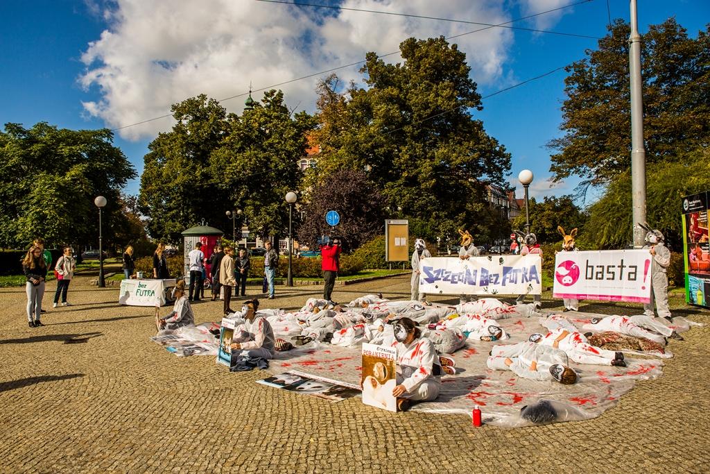 10 Szczecin Bez Futra 27.09.2014