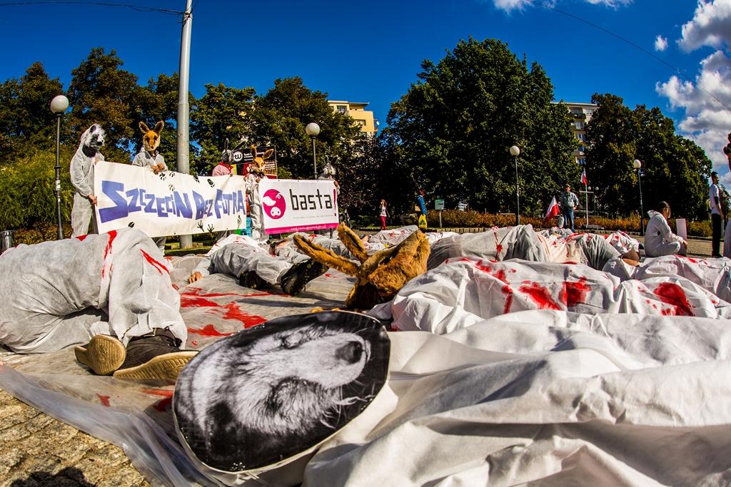 4 Szczecin Bez Futra 27.09.2014
